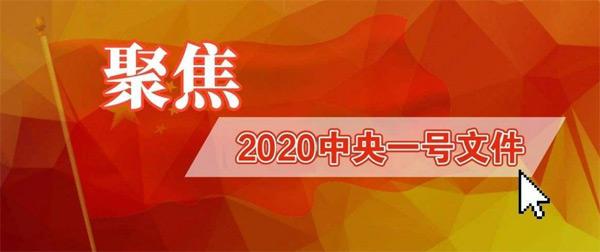 2020年中央1号文件